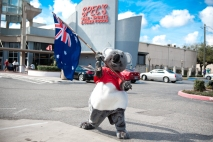 Australia Day Spec's Promotion A Success!